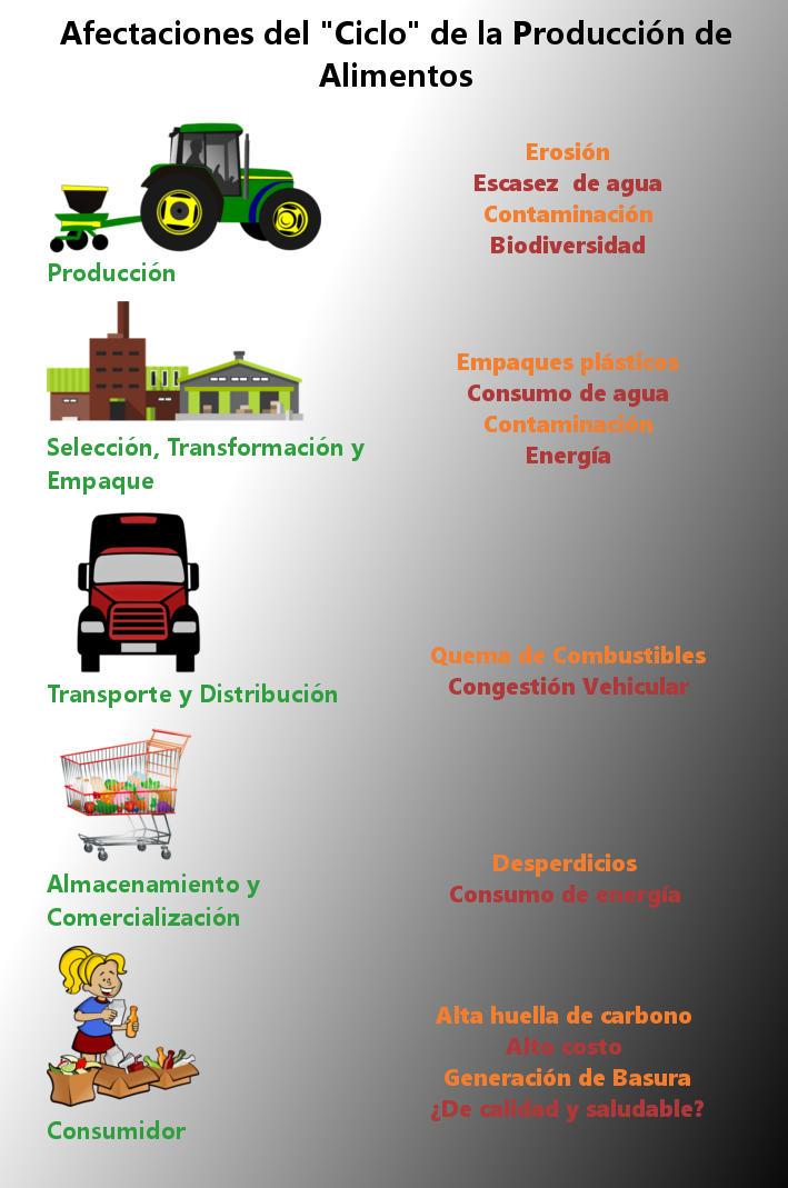 Ciclo de producción de los alimentos